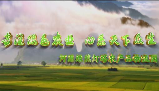 广东省河源绿然灯塔农产品物流园宣传视频
