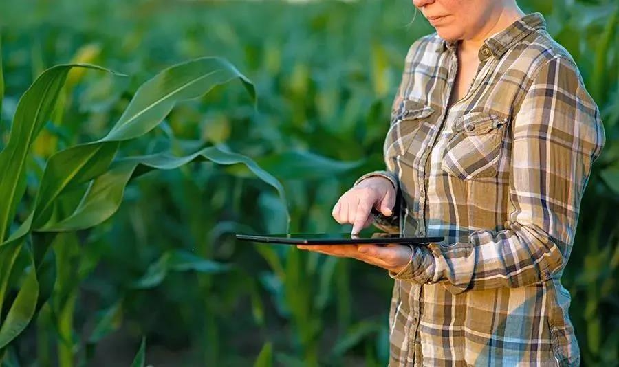 【协会通知】2021年广东省重点农业龙头企业申报开始啦!