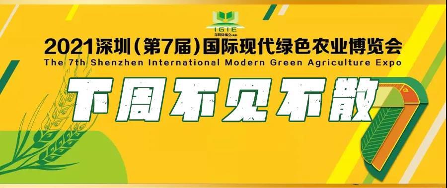 9月23-25日,2021深圳绿博会重磅开启!